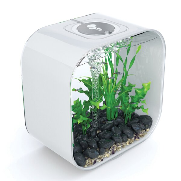 8 Gallon Life Aquarium Tank by biOrb