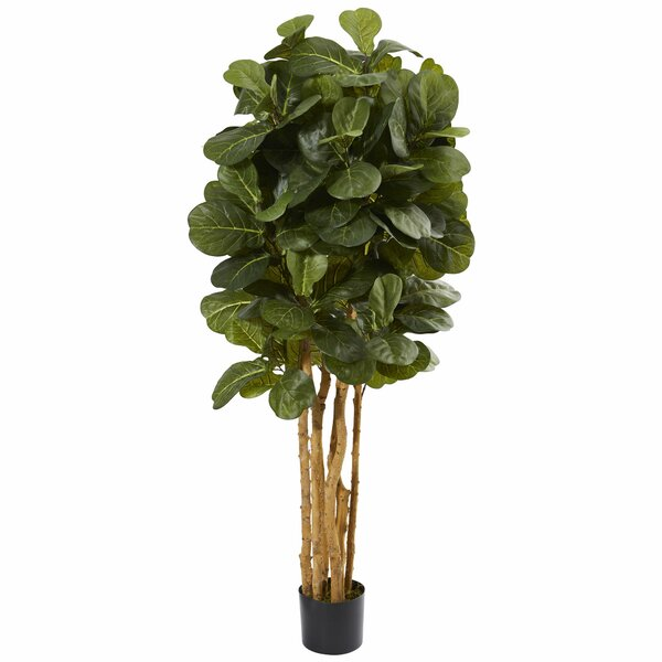 Leaf Floor Foliage Tree in Planter by Mistana
