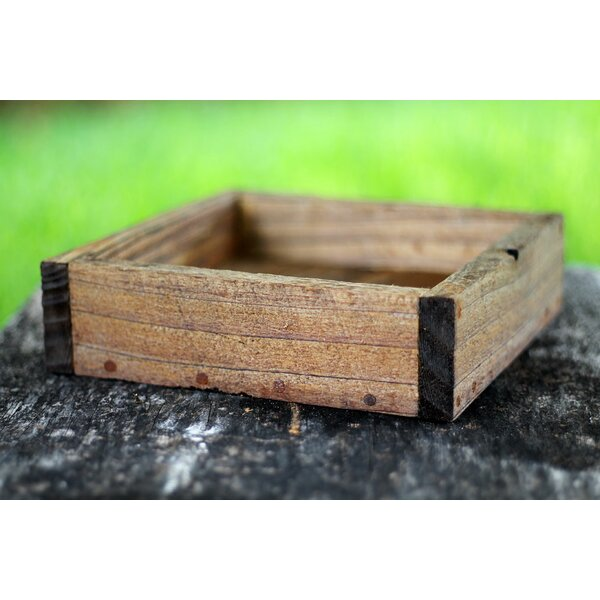 Delarosa Square Serving Tray by Millwood Pines