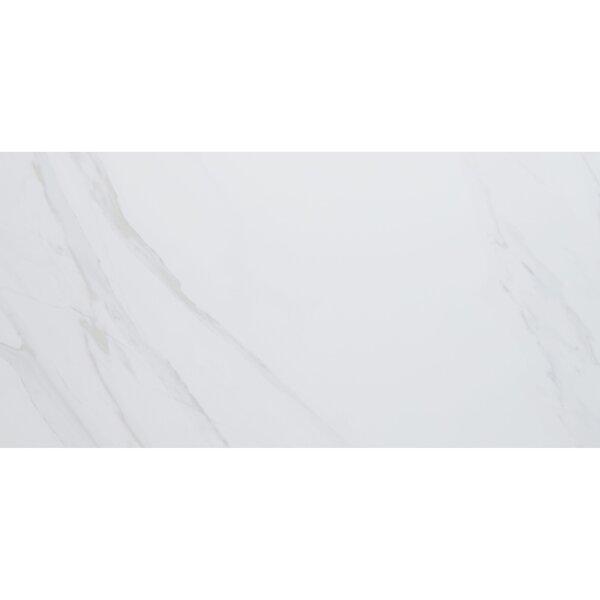 Florentine 12 x 24 Ceramic Field Tile in Carrara by Daltile