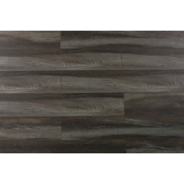 Abdiel Shinta 7.72 x 47.83 x 12.3mm Laminate Flooring in Gray/Brown by Serradon