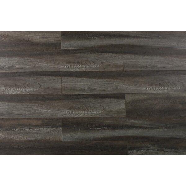 Abdiel Shinta 7.72 x 47.83 x 12.3mm Laminate Flooring in Gray/Brown by Serradon