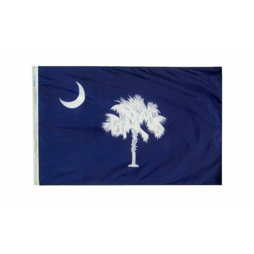 South Carolina Glo Traditional Flag by NeoPlex