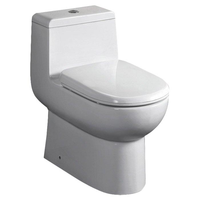 antila dual flush elongated onepiece toilet
