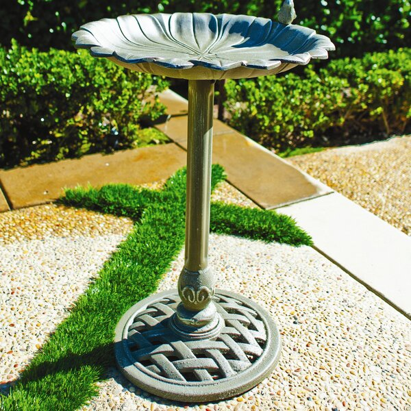 Reflection Birdbath by Innova Hearth and Home