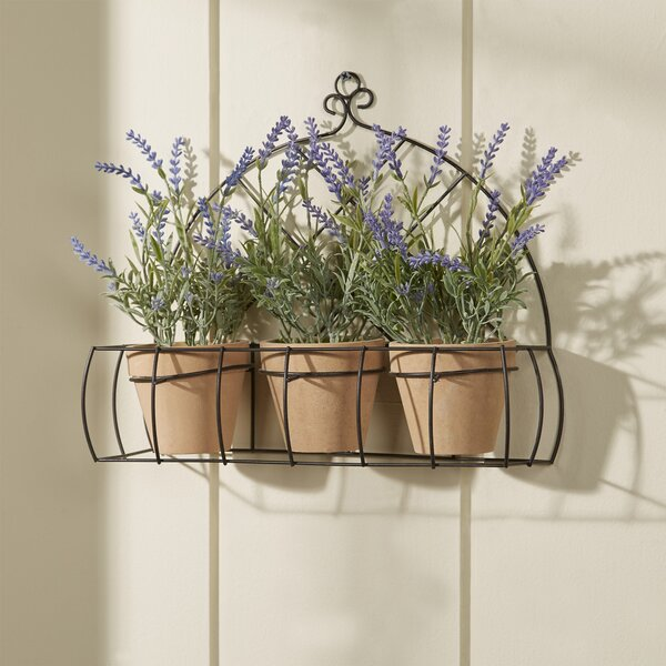 3 Piece Potted Lavender Flower Set with Rack by Lark Manor