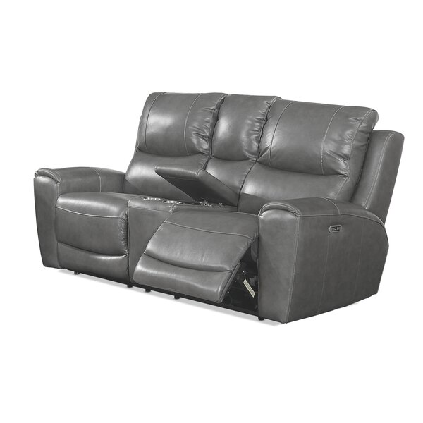 Our Special Palmateer Leather Reclining Loveseat by Red Barrel Studio by Red Barrel Studio