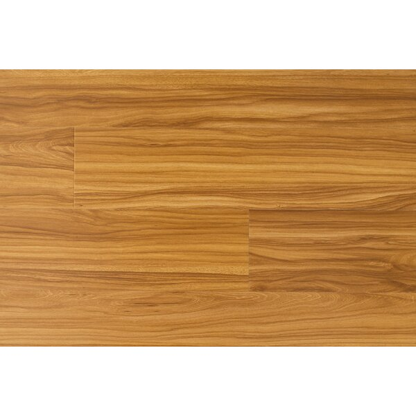 Impact 6 x 48 x 12mm Cherry Laminate Flooring in Tropical by Dyno Exchange