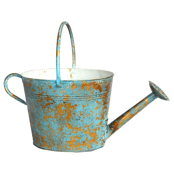 Finnigan Oval Watering Can Metal Pot Planter by August Grove