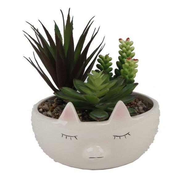 Faux Garden in Large Hedgehog Desktop Succulent Plant in Pot by Ebern Designs