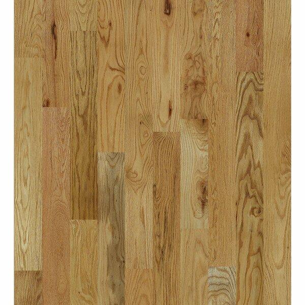 Inglewood Oak 5 Solid Oak Hardwood Flooring in North Fork by Shaw Floors