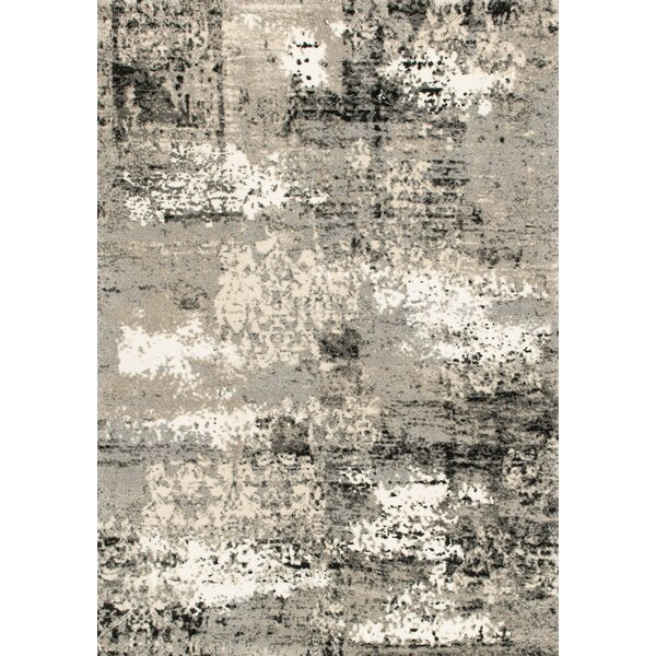 Parinaaz Grey Rug by 17 Stories
