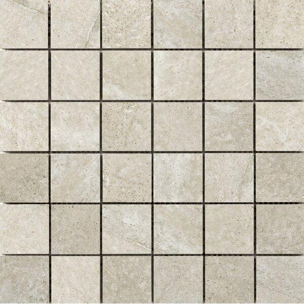 Trovata 2 x 2 Porcelain Mosaic Tile in Journal by Emser Tile