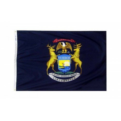 Michigan Glo Traditional Flag by NeoPlex