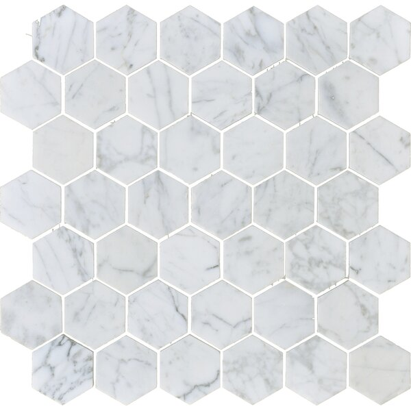 Carrara 2 x 2 Hexagon Honed Marble Mosaic Tile in White by The Bella Collection