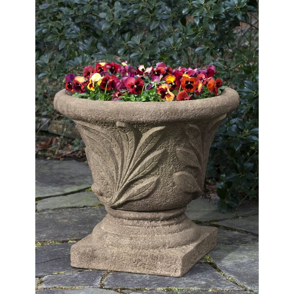 Hassie Super Leaf Cast Stone Pot Planter by Darby Home Co