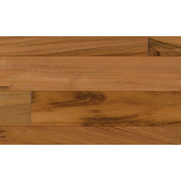 6-1/4 Engineered Tigerwood Hardwood Flooring in Red by IndusParquet