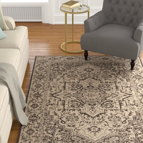 Hoover Brown Area Rug by Canora Grey