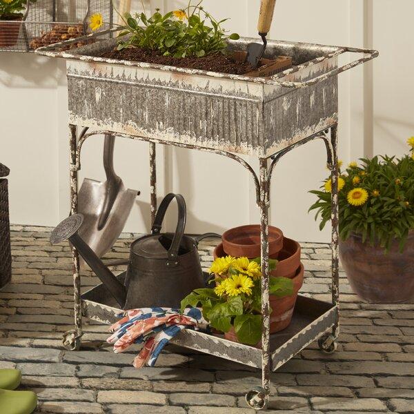 Eckert 2.5 ft x 1 ft Iron Raised Garden by Evergreen Enterprises, Inc