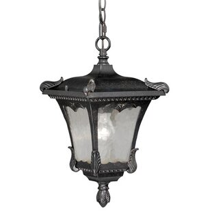 Read Reviews Earl 1-Light Outdoor Hanging Lantern By Astoria Grand