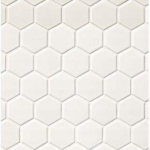 Hexagon 2 X Porcelain Mosaic Tile In Matte White