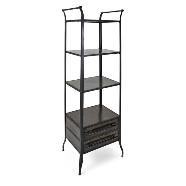 Shavon Metal Etagere Bookcase by 17 Stories