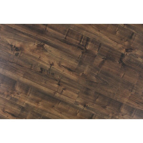 Dombrowski 8 x 48 x 12mm Maple Laminate Flooring in Madura by Serradon