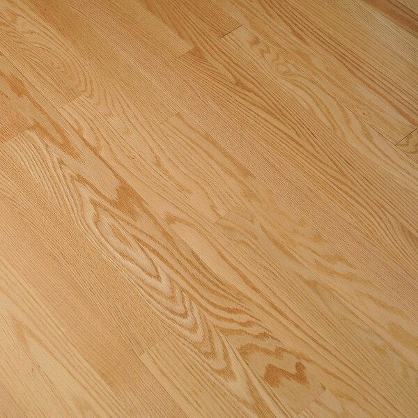 Fulton 2-1/4 Solid Red Oak Hardwood Flooring in High Glossy Natural by Bruce Flooring