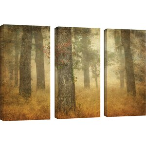Oak Grove In Fog 3 Piece Photographic Print on Wrapped Canvas Set by Loon Peak