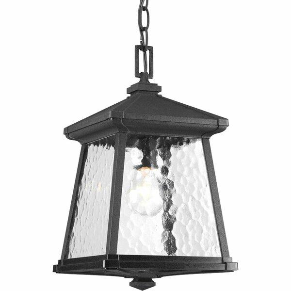 Triplehorn 1-Light Hanging Black Lantern by Alcott Hill