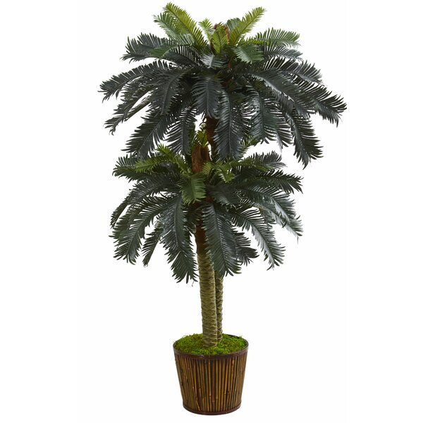 Double Sago Floor Palm Tree in Planter by Bay Isle Home