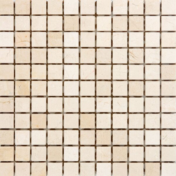 1 x 1 Marble Mosaic Tile in Crema Cappuccino by Epoch Architectural Surfaces