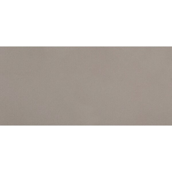 Perspective 12 x 24 Porcelain Field Tile in Pure Gray by Emser Tile