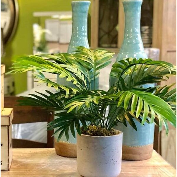 Areca Floor Palm Plant in Pot by Greyleigh