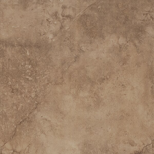 Coliseum 20 x 20 Porcelain Field Tile in Glazed Rome by Emser Tile