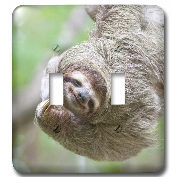 Throated Sloth Wildlife, Corcovado Costa Rica 2-Gang Toggle Light Switch Wall Plate by 3dRose