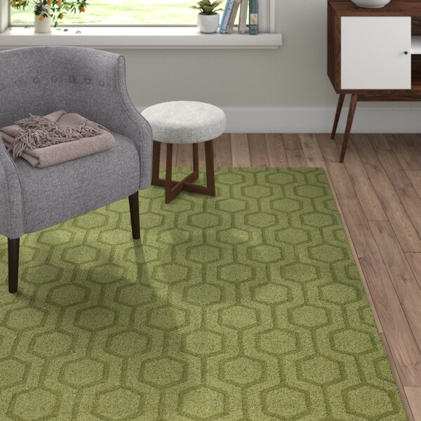 Ogden Hand-Woven Light Green Area Rug by Langley Street