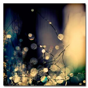 'Fairies at Nighttime' by Beata Czyzowska Young Photographic Print on Canvas by Trademark Fine Art