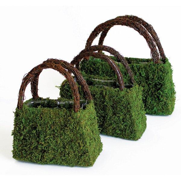 Deco Purse 3-Piece Pot Planter Set by SuperMoss™