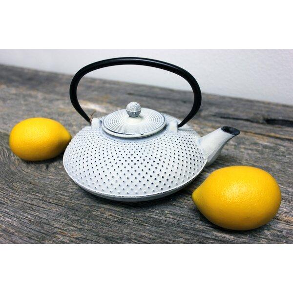 Dot .84 qt. Cast Iron Teapot by BergHOFF International