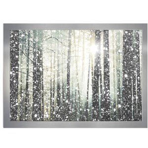 Magical Forest Silver Framed Graphic Art Print by Mercury Row