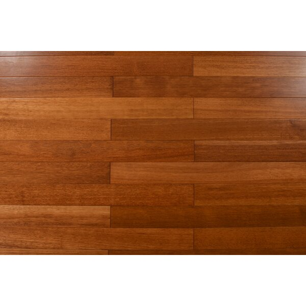 3.25 Solid Kampus Hardwood Flooring in Natural by Albero Valley