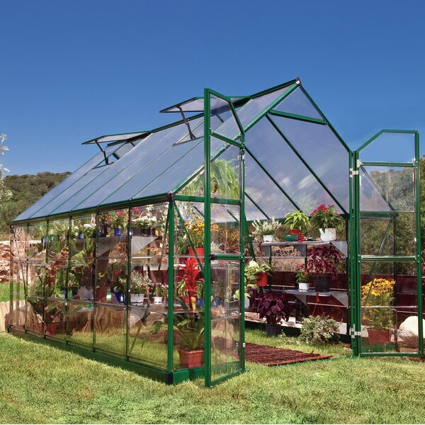Balance 8 Ft. W x 12 Ft. D Greenhouse by Palram