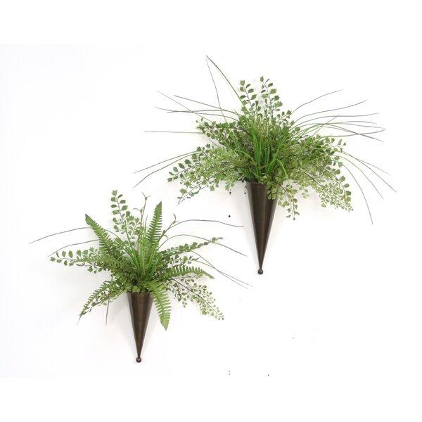 2 Piece Maiden Hair Fern, Grass Hanging Plant in Decorative Vase Set by Distinctive Designs
