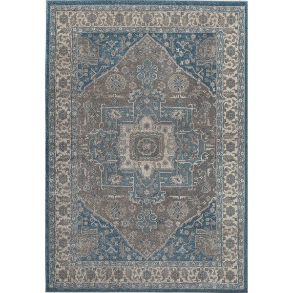 Estelle Frisson Gray/Blue Area Rug by Rugs America