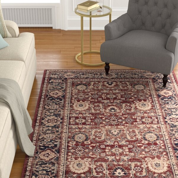 Fleetwood Power Loomed Cotton Rust/Navy Area Rug by Alcott Hill