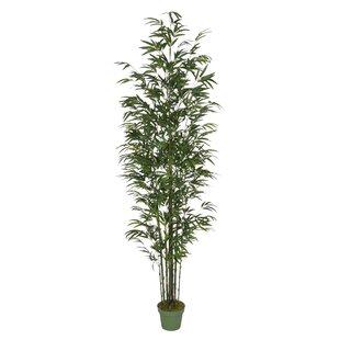 tall indoor artificial trees | wayfair Artificial Indoor Trees