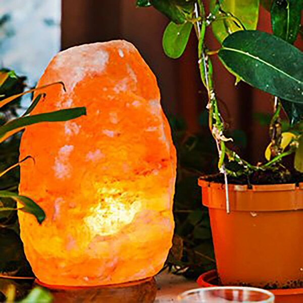 Banbury Himalayan Glow 11 Salt Lamp (Set of 2) by World Menagerie