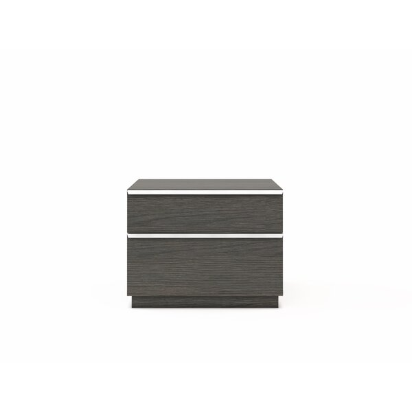 Coggeshall 2-Drawer Nightstand by Orren Ellis