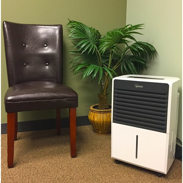 50 Pint Dehumidifier with Casters by Winix